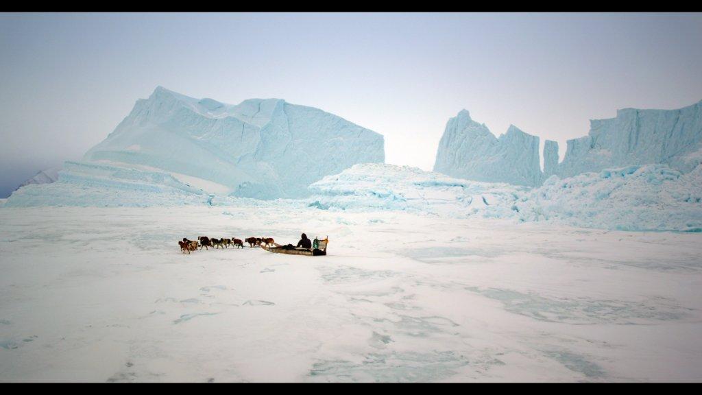 """Online Film: """"The Last Ice"""""""